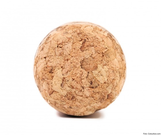Close up of champagne cork.